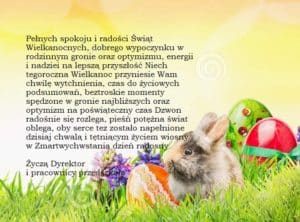 easter-background-bunny-eggs-flowers-grass-sunny-sky-bokeh-banner-website-48909504
